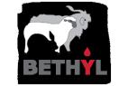 bethyl_logotipo