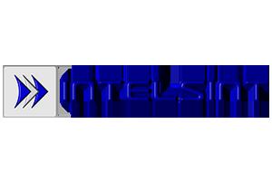 Logo intelsint
